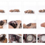 amilcar-losse-fotos-65x65